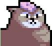 :cat_1: